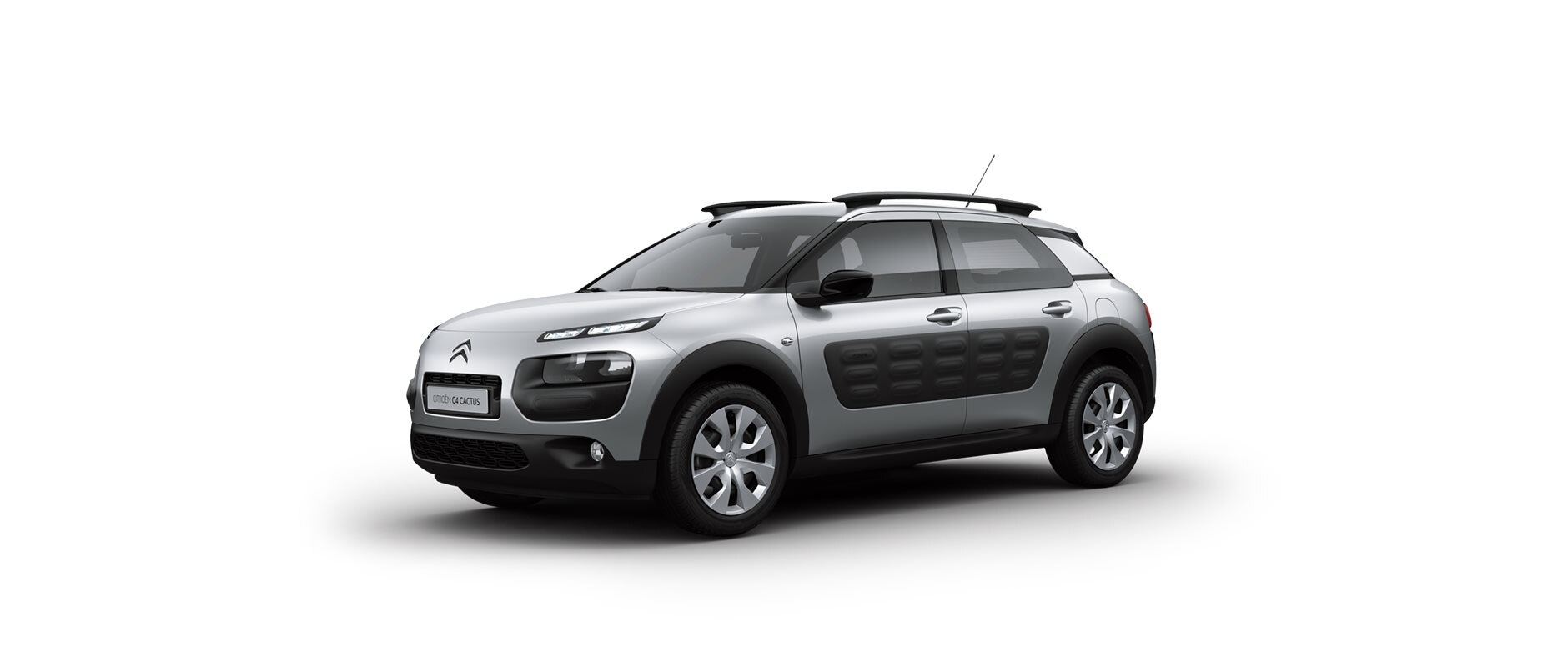 C4Cactus-Feel-front-view